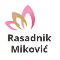 Rasadnik Miković